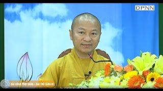 Cải cách Phật giáo - Vai trò Tăng Ni - TT. Thích Nhật Từ