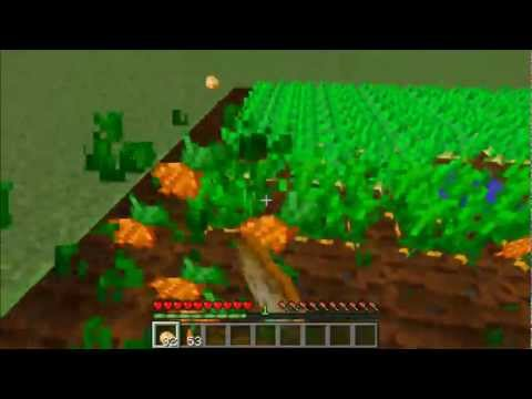 Minecraft: How To Farm Carrots And Potatoes