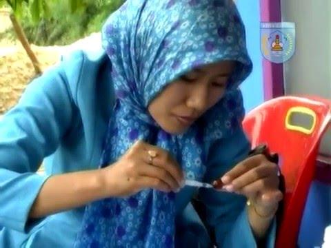 Langsa City - Aceh