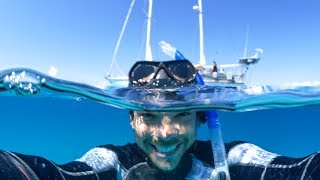 This Is Why We Love SCUBA DIVING!  Sailing Vessel Delos Ep. 130