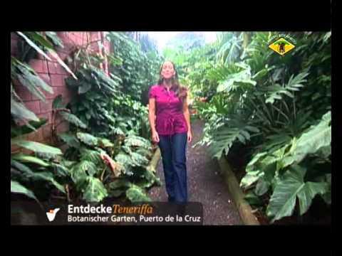 Entdecke Teneriffa, Botanischer Garten, Puerto De La Cruz