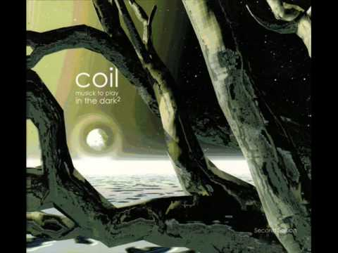 Coil - Paranoid Inlay