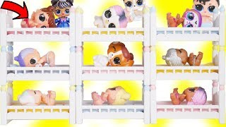 LOL Surprise Dolls Mix Wrong Bunk beds with Lil Sister Fuzzy Pets | Toy Egg Videos