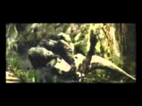 Переозвучка (Кинго Конга) кАлиКатура4