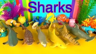 Shark Toys Collection Great White Shark Tiger Shark Bull Shark Jaws Tiburón Tubarão Toys for Kids