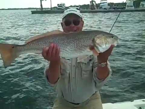 Ten Pound Redfish | Bradenton Florida Fishing | Inshore Fishing Charters