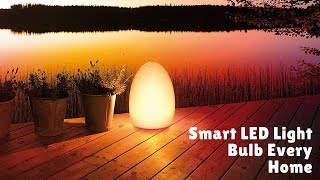 Smart & Beautiful LED Bulb Every Home Must Have