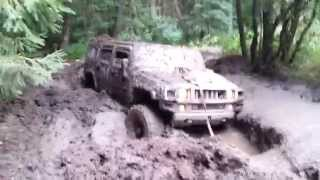 Hummer H2 extreme stuck in mud