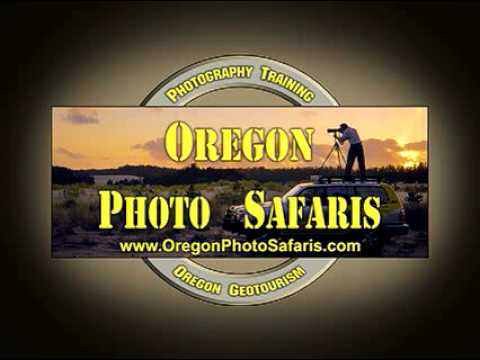 Oregon Photo Safaris