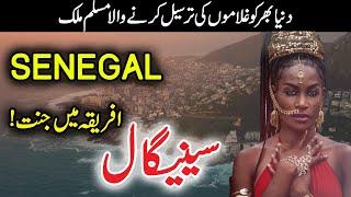Travel To Senegal in Urdu/Hindi | History Of Senegal Documentary | Flying News Urdu