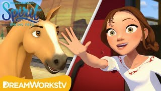 Lucky Goes to Boarding School | SPIRIT RIDING FREE