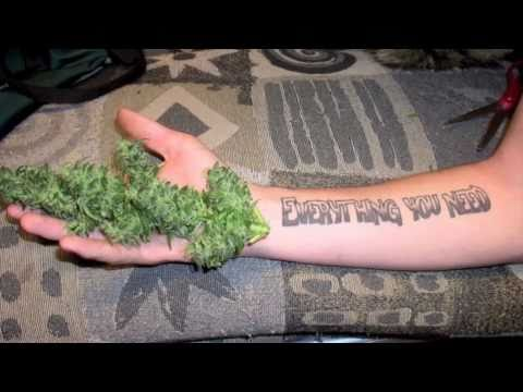 Slightly stoopid tattoo