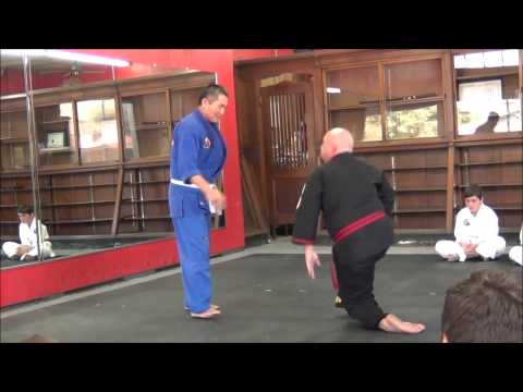 Hapkido joint locks 합기도 관절기 Image 1