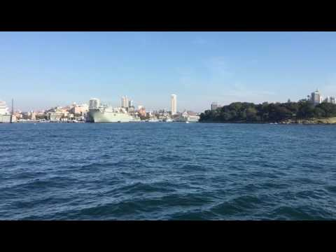 Whale Watching Boat Tour out of Sydney Harbour