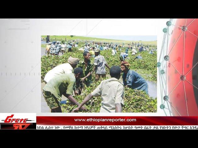 ETHIOPIAN REPORTER TV |  Amharic  News 07/12/2017