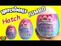 JUMBO Hatchimals Glittering Garden Twin Surprise Eggs mp3