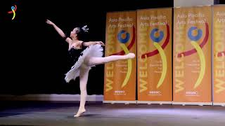 APAF Vietnam 2019 | 20 January at Australian International School ( Part 9 )