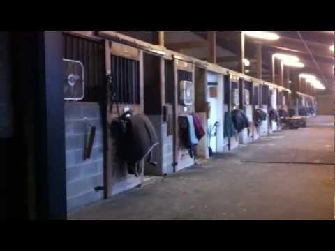 Horse Riding Sport at Foxcroft School