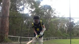 HOWZAT!!! Australia's game, Australia's song by Kerri Boyes