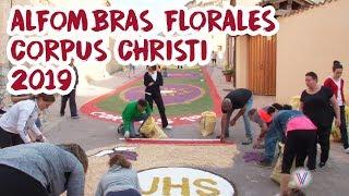 ALFOMBRAS FLORALES CORPUS CHRISTI 2019 - San Esteban de Gormaz