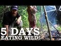 5 DAYS Eating ONLY WILD FOODS Survival Challenge The Wilderness Living Challenge 2017 SEASON 2 mp3