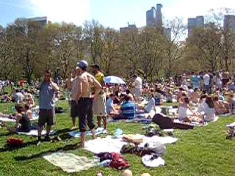Central Park Sunbathing