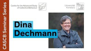 Dina Dechmann - Ephemeral resource adaptations in bats | Collective Behaviour Seminar Series