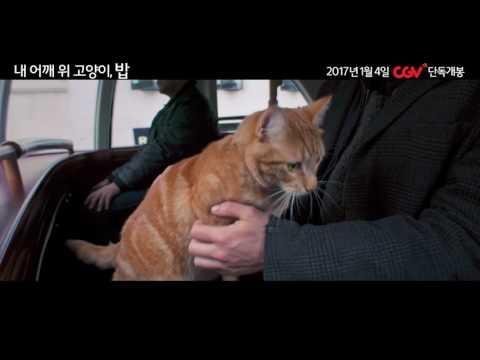 [감자의 3류 비평] 내 어깨 위 고양이, 밥 (A Street Cat Named Bob, 2016) 메인 예고편
