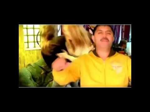 Sonerie telefon » Nicolae Guta – Noi bem spargem pahare