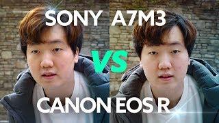 소니 A7III vs 캐논 EOS R - 싸움을 붙여보았씁니다. [비디오성능 위주 비교]