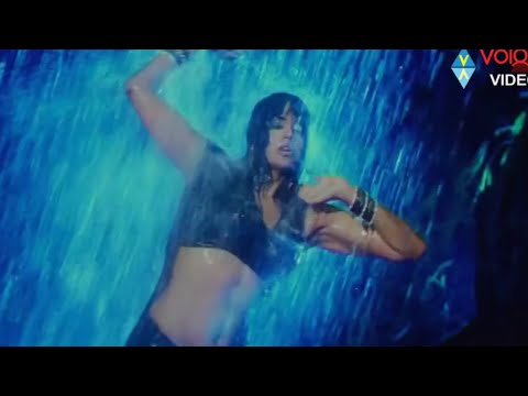 Sameera Reddy Curvaceous Belly Folds & Erotic Navel Close Up Slow Motion Hd video