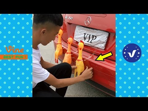 Funny Videos 2018 ● People doing stupid things P22