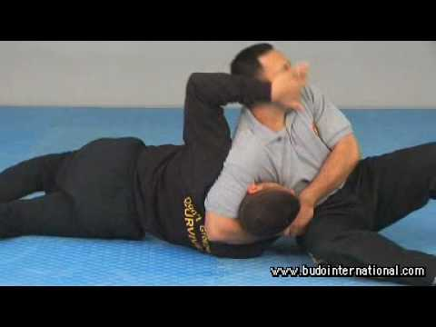 COMBAT HAPKIDO. GROUND SURVIVAL. DAVID RIVAS