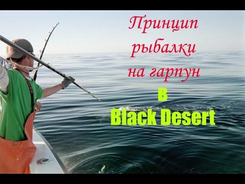 заработок на рыбалке в black desert