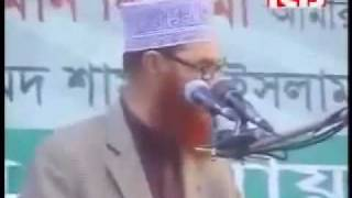 Heavy Weight Speech By Allama Deloar Hossain Saidi