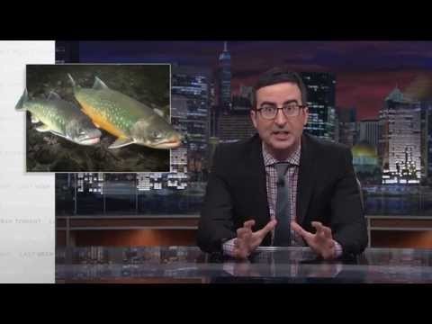 Salmon Cannon: Last Week Tonight with John Oliver (HBO)