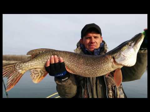 рыбалка в молчаново томской области видео
