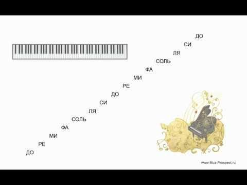 Самоучитель игры на пианино (фортепиано) - Урок 1. Названия звуков