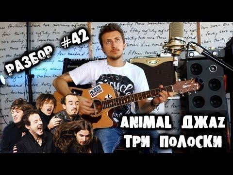 Animal Джаz (Джаз, Jazz) - Поздно