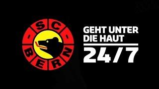 LIVE Testspiel: EHC VISP vs. SC BERN
