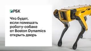 Робот-собака SpotMini продемонстрировал новую сверхспособность