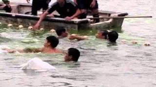 Vây bắt Cụ Rùa Hồ Gươm ngày 3 - 4 - 2011 - Cưỡi lưng rùa, lùa vào lưới