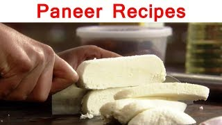Paneer Recipes for Paneer Lovers | Special Episode Part 1
