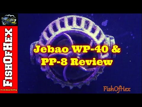 Jebao WP-40 / PP-8 Powerhead Review & Three Month Cleaning