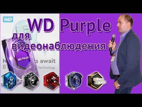 """Western Digital Purple - насколько  жесткие диски этого производителя подходят для создания систем видеонаблюдения? Об этом рассказывает Александр Чайковский, компания """"Western Digital"""""""