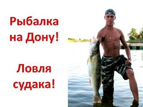 Рыболов - эксперт. Ловля судака легким джигом
