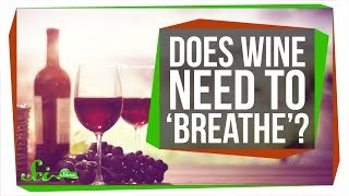 Does Wine Really Need to