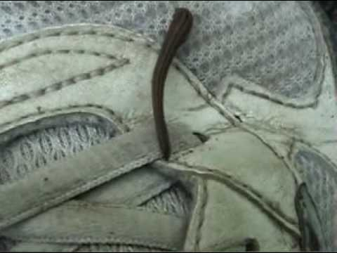 Japan Mountain Leech in my Shoe