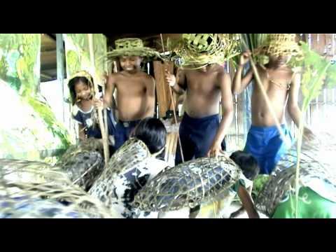 Torichiga (historia de taricayas / river turtles story)