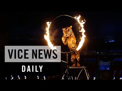 VICE News Daily: Mexico Bans Circus Animal Performances